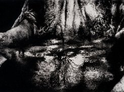 Vesi, paperilitografia levylle, 2015, 21x47 cm