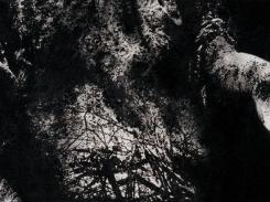 Tuli, paperilitografia levylle, 2016, 21x47 cm